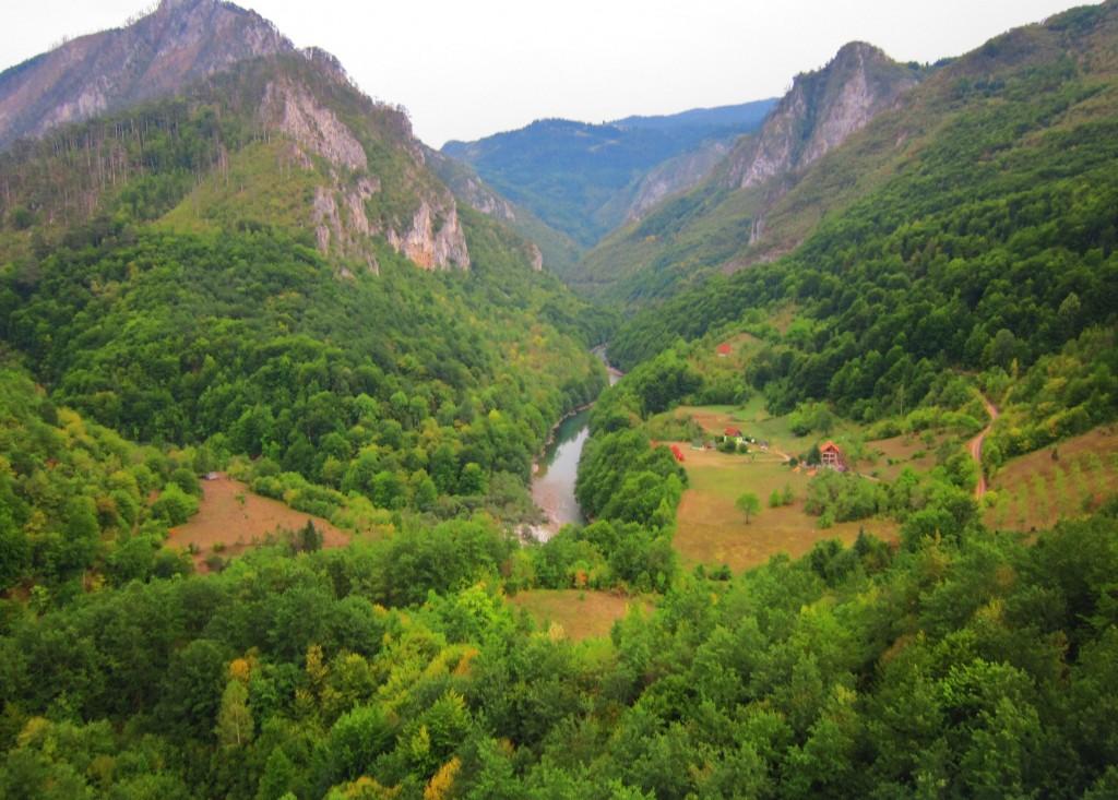 """Panorama Canionului Tara"""