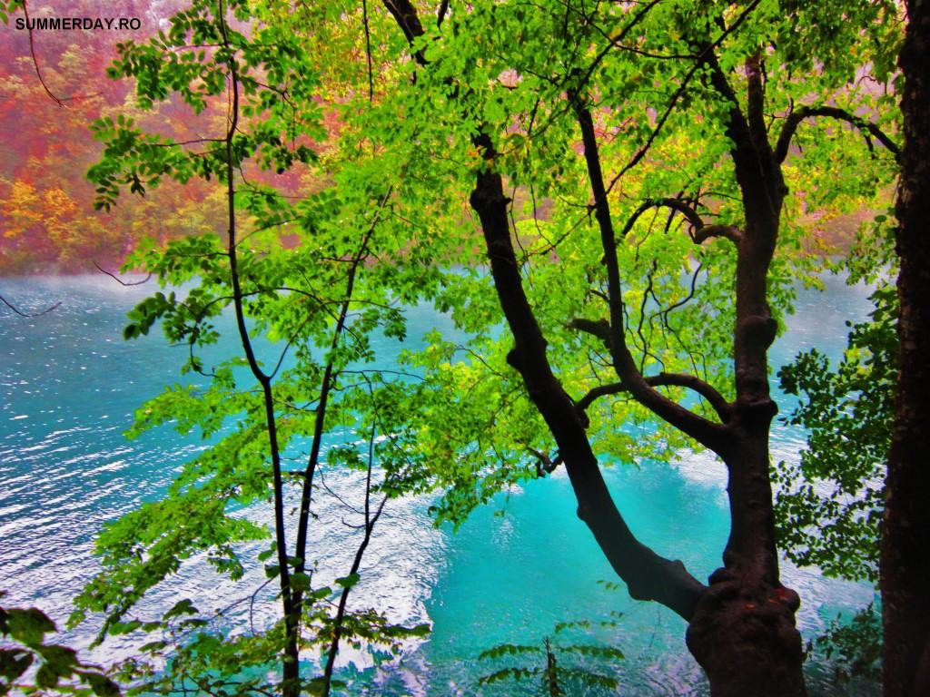 """""""lacurile plitvice"""""""