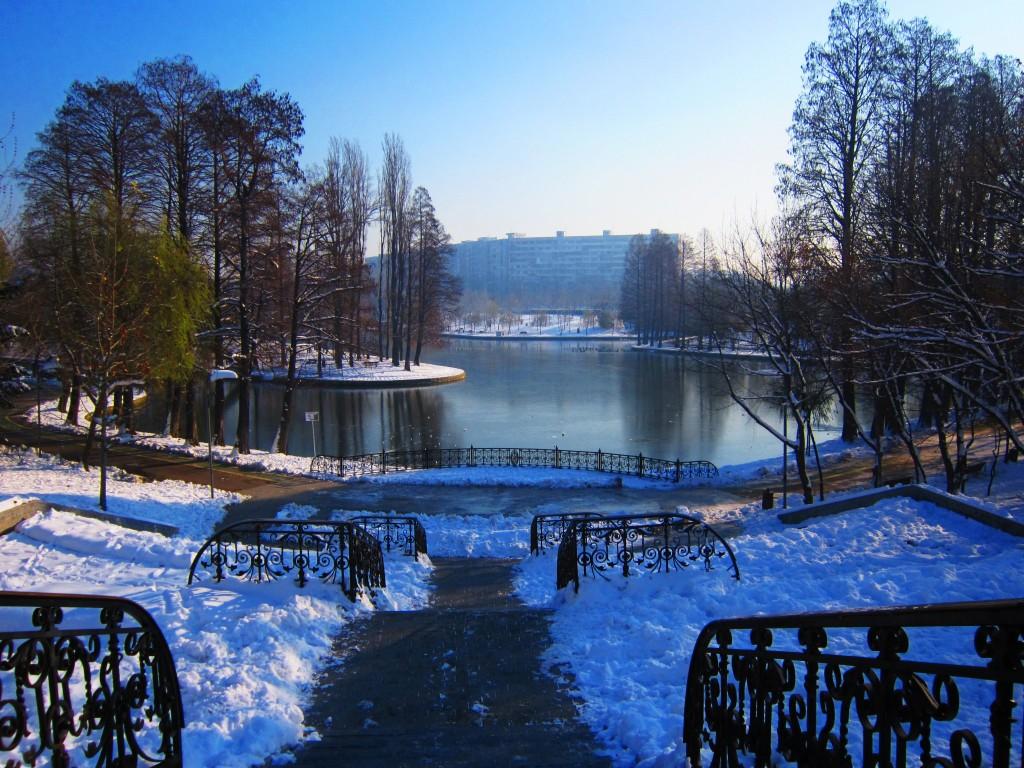 iarna-in-parc