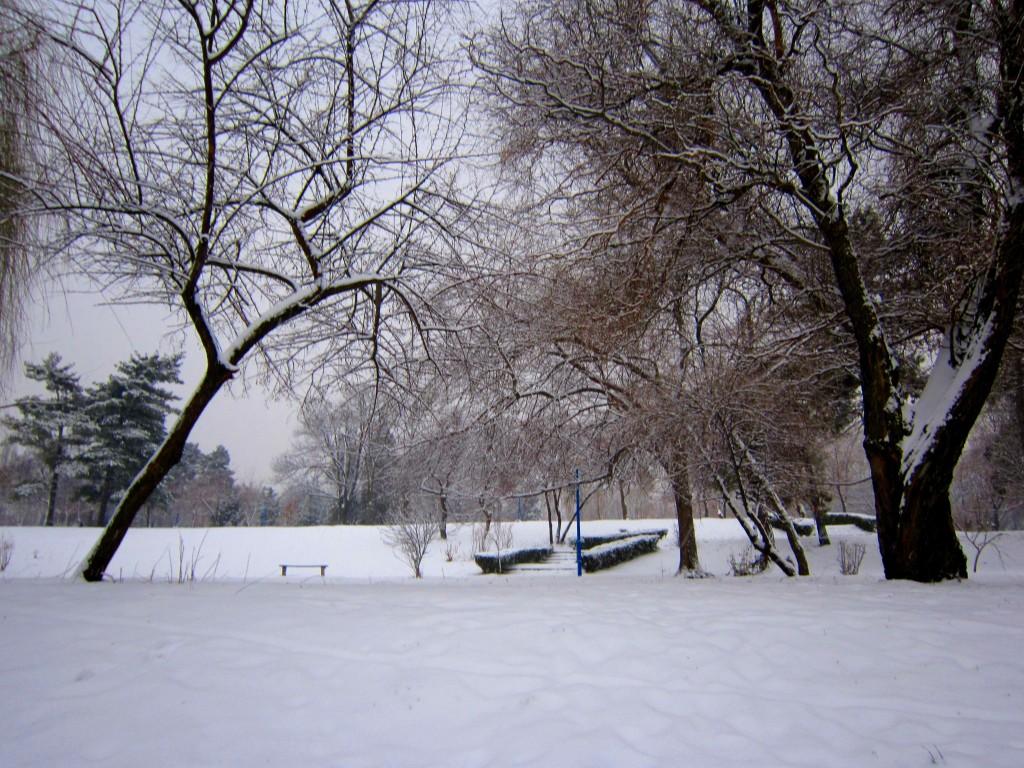 """imagini de iarna"""