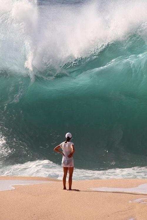 """""""tsunami"""""""