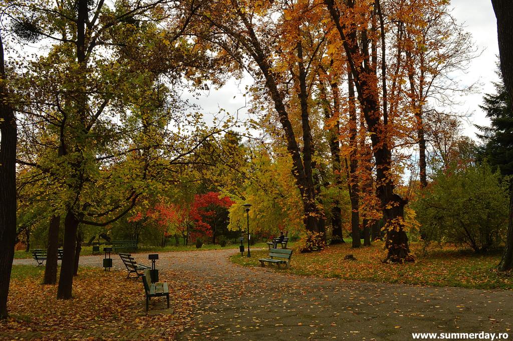plimbari-in parc
