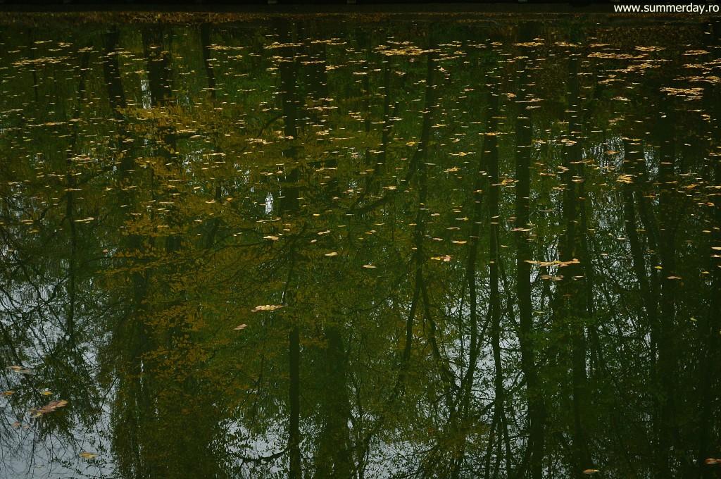 relexii-autumnale