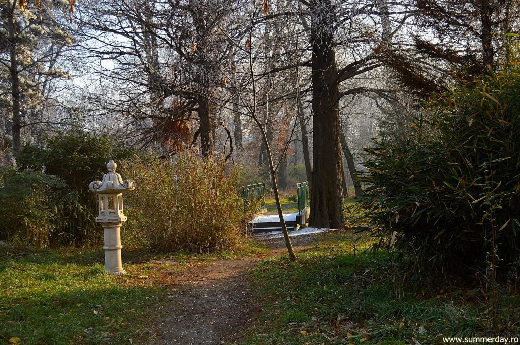 iarna-la-gradina-botanica