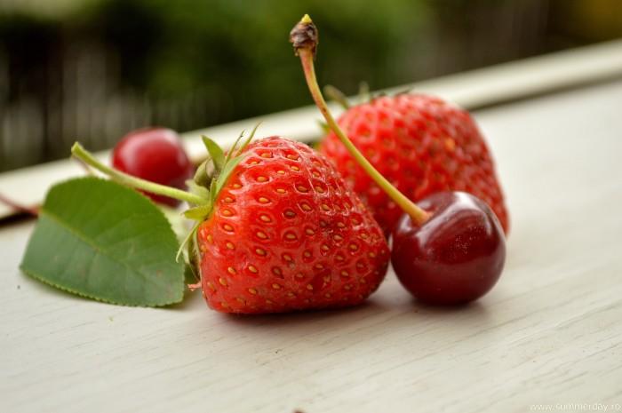 fructe-macro