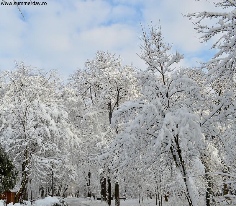 imagini-de-iarna-2014