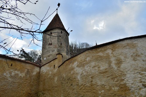 Turnul-Macelarilor
