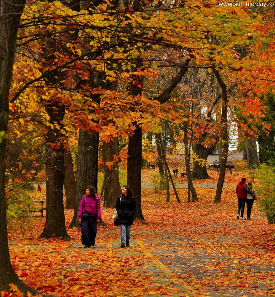 plimbare-prin-parc